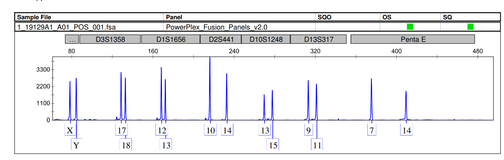 Example of an electropherogram